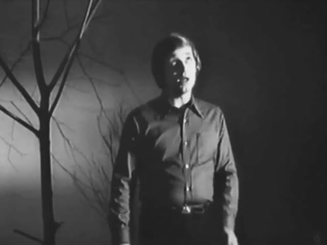 Анатолий Фокин Соловьи поют, заливаются