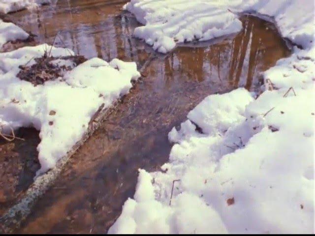 Алибек Днишев Весенние воды
