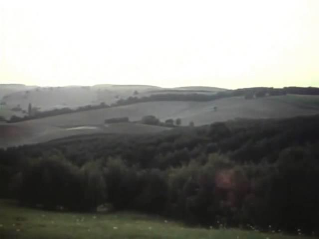 Лариса Кандалова (за кадром) Улетели листья с тополей
