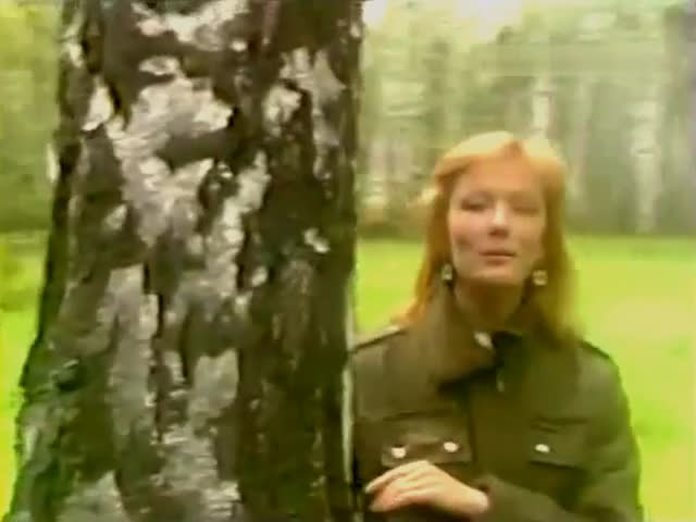 Ольга Зарубина Печаль