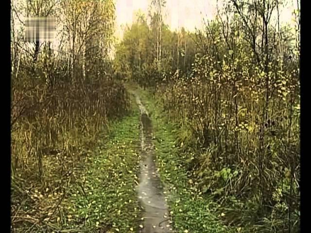 Нина Бродская Осенний этюд