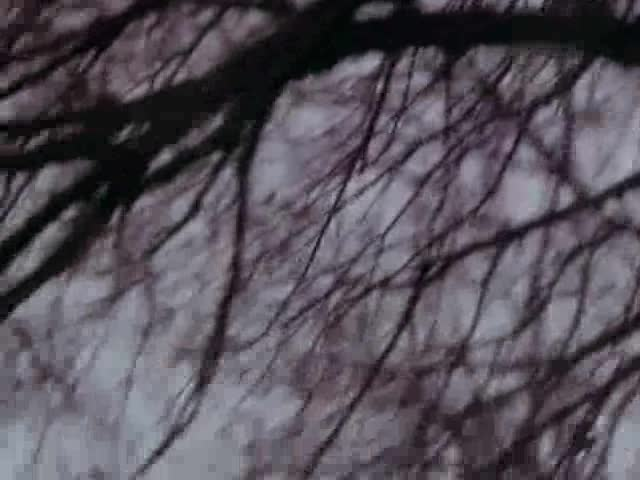 Эдита Пьеха Прощальная песня