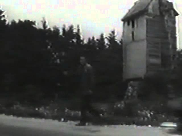 Павел Кравецкий (за кадром) Птицы возвращаются домой