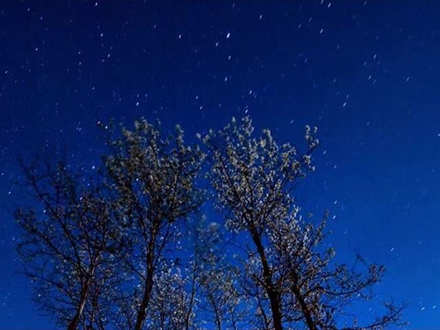 Тамара Миансарова Вечные звёзды