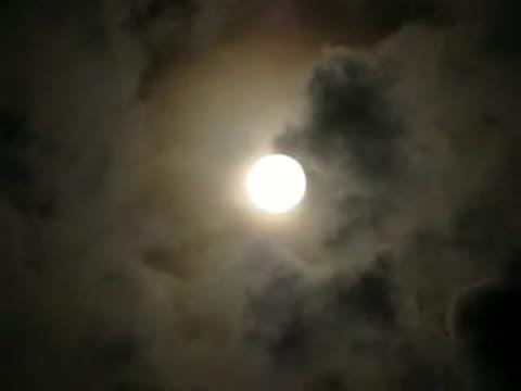 Владимир Трошин Глядела бледная луна