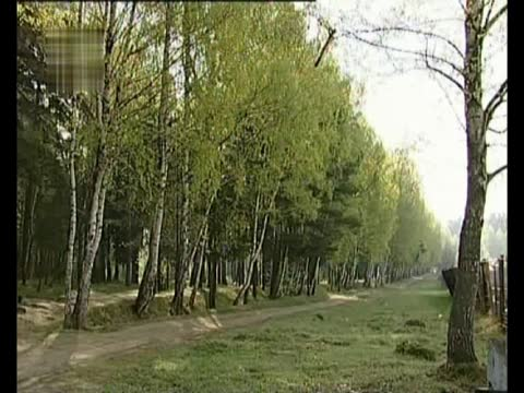 Владимир Трошин Весной