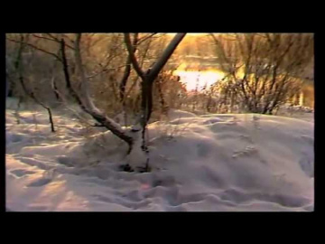 Нина Бродская Русская зима