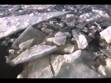 Владимир Трошин Идут белые снеги