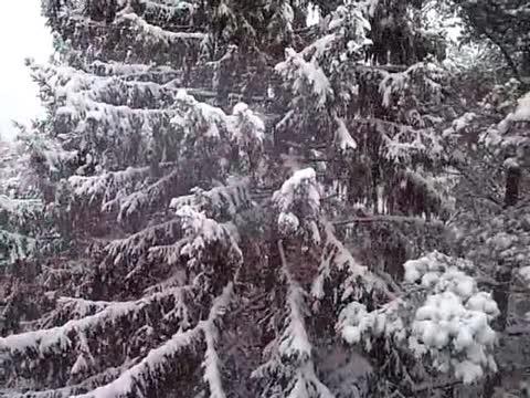Гюлли Чохели Первый снег