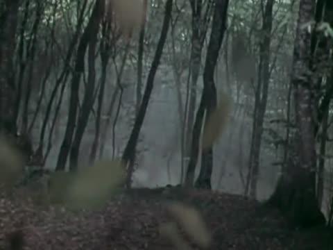 Полад Бюль-Бюль оглы (за кадром) Затерялся луч рассвета